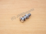 Screw for Handlebar lever - polished stainless steel